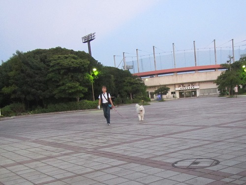 IMG_7838 (2).JPG